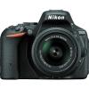 دیدنگار|دوربین نیکون|دوربین عکاسی نیکون Nikon D5500 با لنز 55-18 VR II