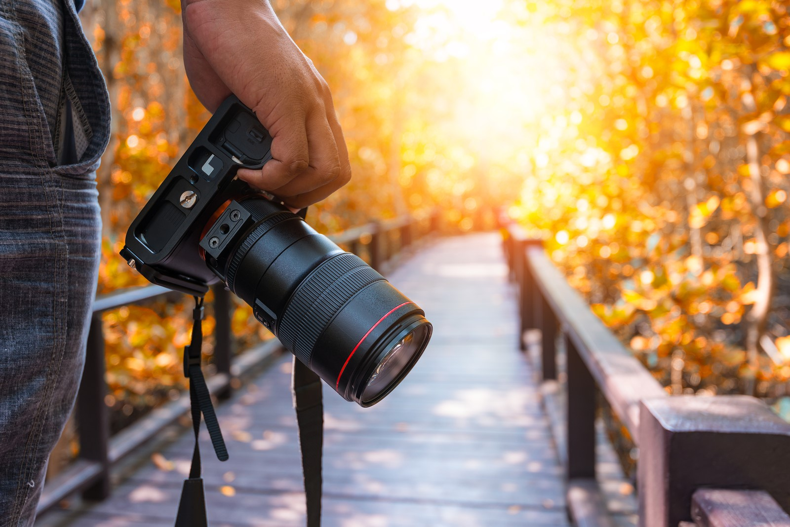 دسته بندی دوربین های عکاسی: براساس سایز دوربین ها و نوع لنز آنها