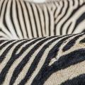 .17 نکته طلایی برای عکاسی در باغ وحش