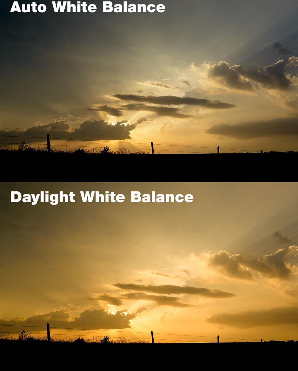وایت بالانس Daylight