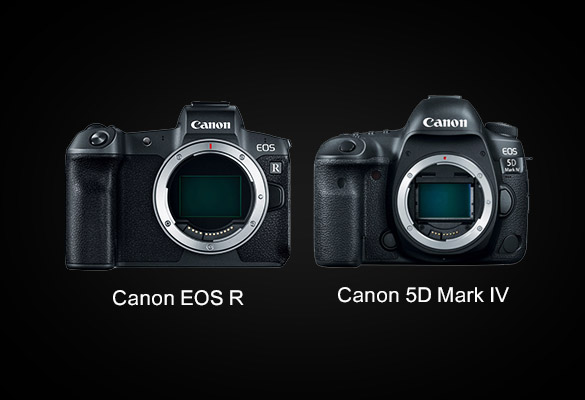 مقایسه دوربین کانن ۵D Mark IV و دوربین کانن EOS R