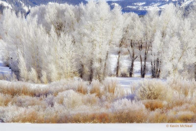 آموزش عکاسی در زمستان