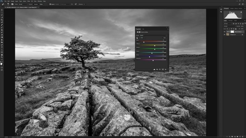 Cara mengedit foto di Photoshop: Konversi foto menjadi hitam dan putih