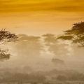 .تکنیک های عکاسی طبیعت : الگو در عکاسی طبیعت
