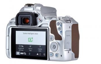دوربین 250D کانن