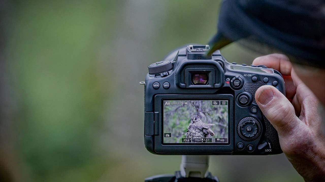 نمونه عکسهای دوربین 90d