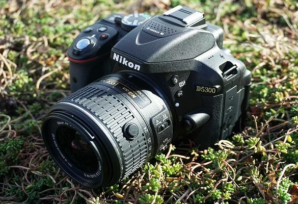 مقایسه دوربین نیکون D3500 و D5300