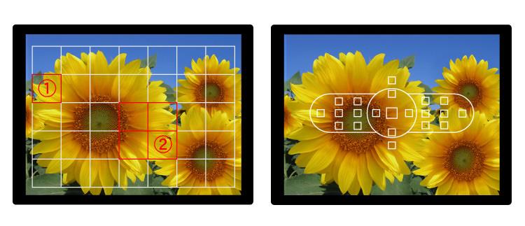 تفاوت نقاط فوکوس در دوربین های DSLR و میکرو چهار سوم بدون آینه
