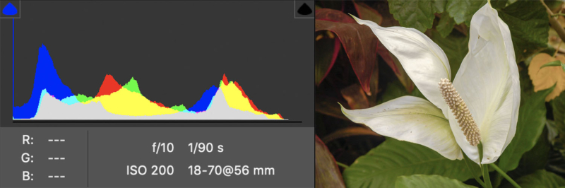 نمودار هیستوگرام RGB