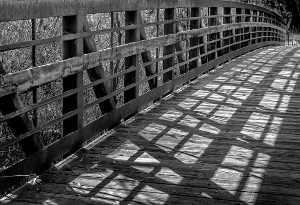 سایه در عکاسی : چگونه سایه به شما کمک میکند تا نور را بهتر بشناسید ؟