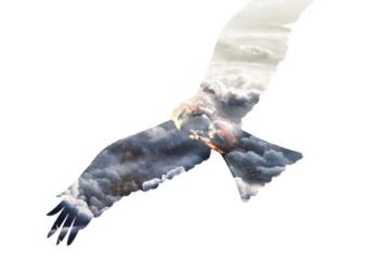 تکنیک ساخت تصاویر به سبک دبل اکسپوژر در فتوشاپ المنتس